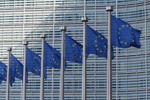 This is a photo of European Flags representing the EU