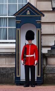 Photograph of Guard outside Buckingham Palace
